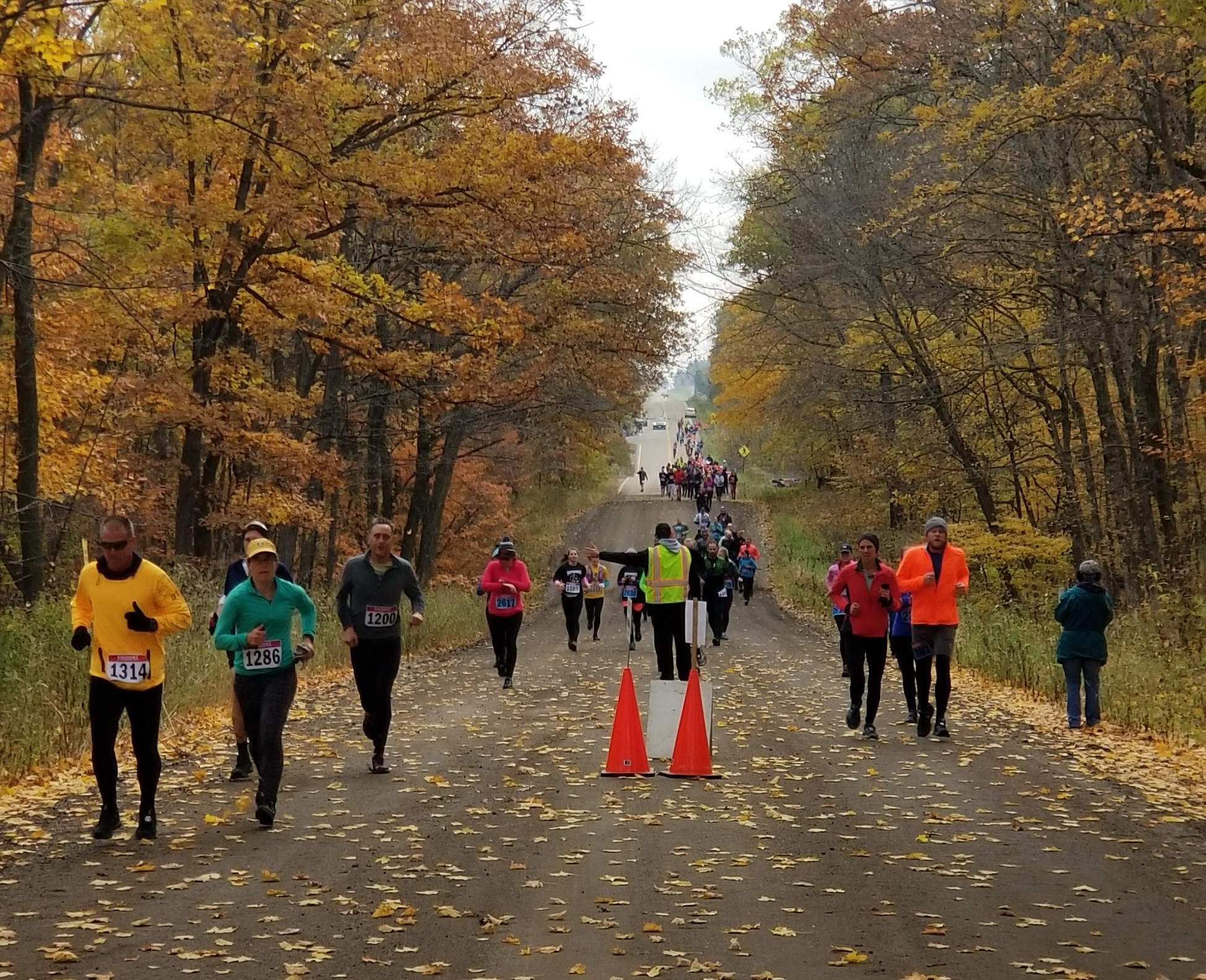 Run in woods 2018